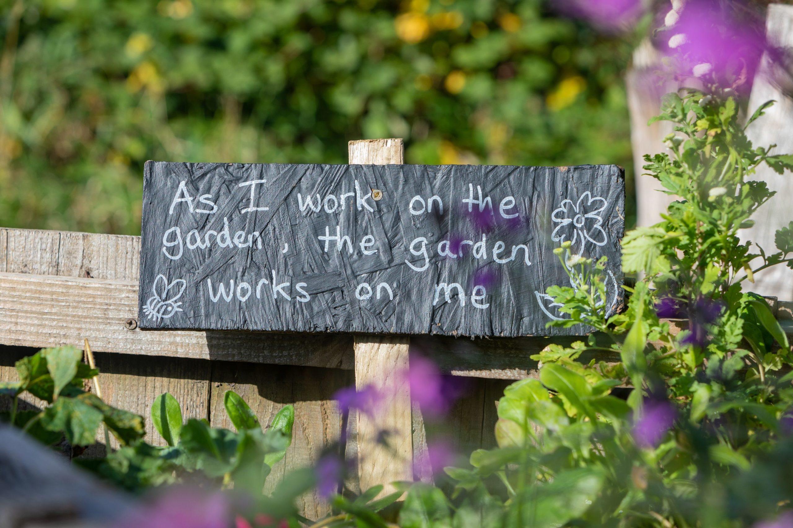 community gardening therapy